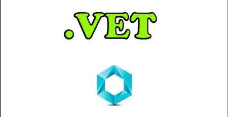 ثبت-دامنه-VET