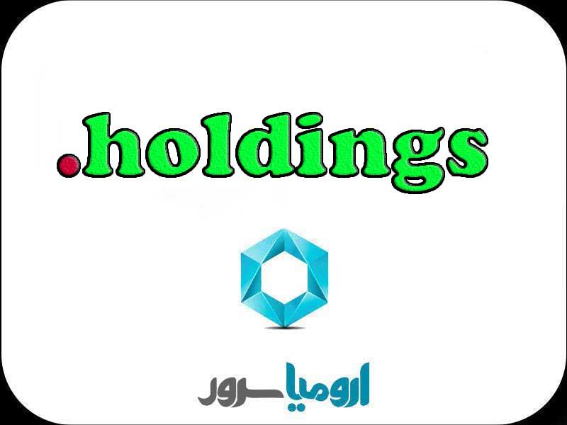 ثبت-دامنه-holdings