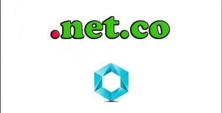 ثبت-دامنه-net.co
